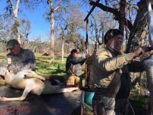 1/16/16- San Saba Hunt - cleaning party
